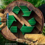 La nueva alternativa ecológica a la fibra textil tradicional