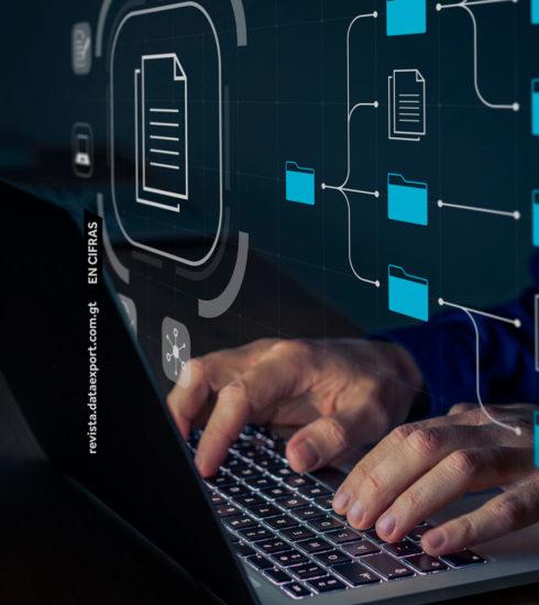 Las fuentes de consulta digitales que todo exportador debe conocer